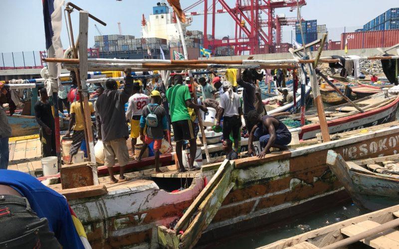 Togo Fischmarkt1024